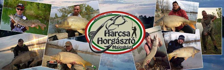 Harcsa Horgásztó Majosháza